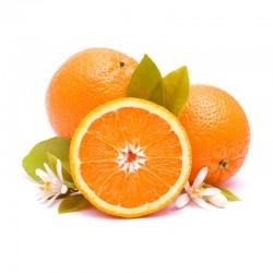 Oranges Premium