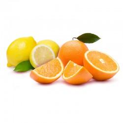 Oranges+Citrons (6+6)