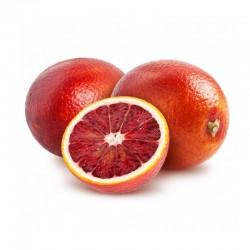 Orange Sanguina (12 Kilos)
