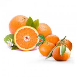 Mix Ortaniques+Oranges...
